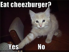 Eat cheezburger?        Yes              No
