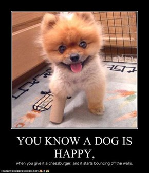 YOU KNOW A DOG IS HAPPY,