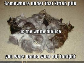 Somewhere under that kitteh pile is the white blouse you were gonna wear out tonight