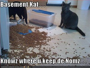 Basement Kat. . .  Knowz where u keep de Nomz. . .