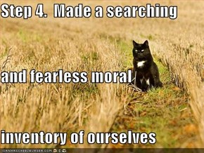 Step 4.  Made a searching and fearless moral inventory of ourselves
