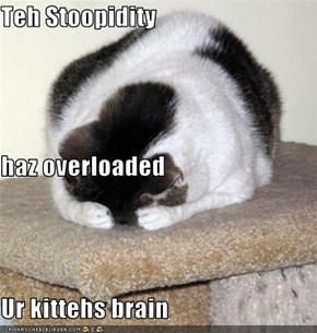 Teh Stoopidity haz overloaded Ur kittehs brain