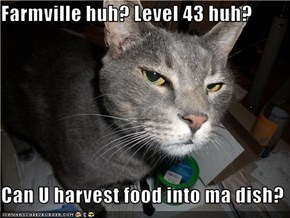 Farmville huh? Level 43 huh?  Can U harvest food into ma dish?