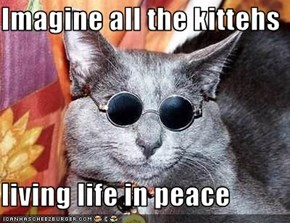 Imagine all the kittehs  living life in peace
