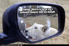 Caution:  Objects in mirror are a helluvalot hungrier than you thought.