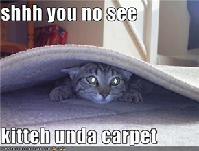 shhh you no see  kitteh unda carpet