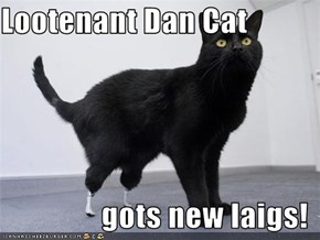 Lootenant Dan Cat                  gots new laigs!