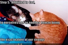 Step 5.  Admitted to God, to ourselves and to another human being the exact nature of our wrongs