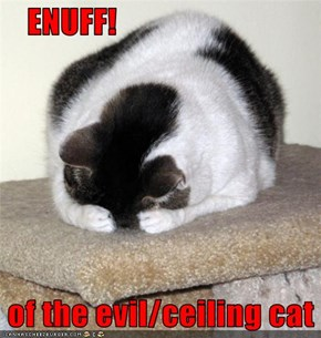 ENUFF!   of the evil/ceiling cat