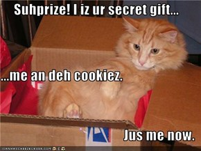 Suhprize! I iz ur secret gift... ...me an deh cookiez. Jus me now.