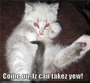 Come on, Iz can takez yew!