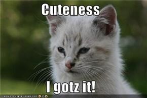 Cuteness  I gotz it!