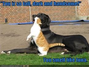 """You iz so tall, dark and handsome!""                                           You smell like tuna."