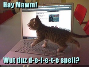 Hay Mawm!    Wut duz d-e-l-e-t-e spell?