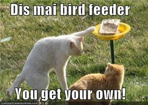 Dis mai bird feeder  You get your own!