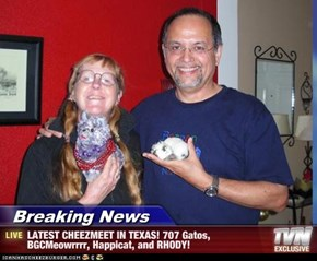 Breaking News - LATEST CHEEZMEET IN TEXAS! 707 Gatos, BGCMeowrrrr, Happicat, and RHODY!