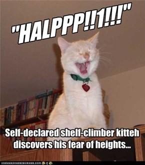 """""""HALPPP!!1!!!"""""""