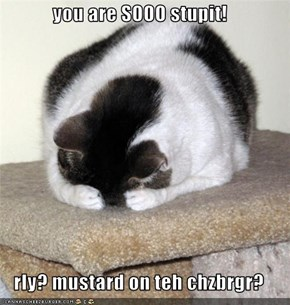 you are SOOO stupit!  rly? mustard on teh chzbrgr?