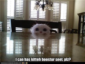 I can has kitteh boostur seet, plz?