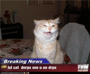 Breaking News - lol cat  derps see u on drps