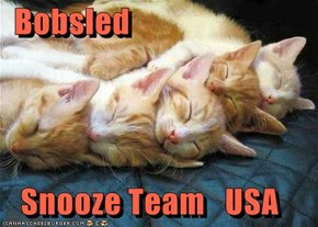 Bobsled     Snooze Team   USA