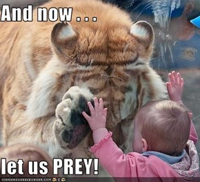 And now . . .   let us PREY!