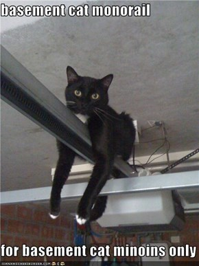 basement cat monorail  for basement cat minoins only