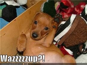 Wazzzzzup?!
