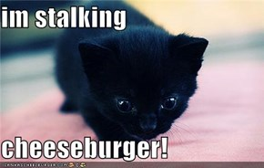 im stalking   cheeseburger!
