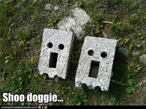 Shoo doggie...