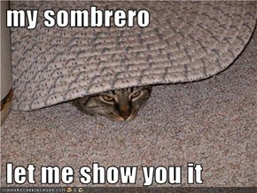 my sombrero   let me show you it