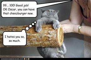 99... 100! Good job! OK Oscar, you can have that cheezburger now.