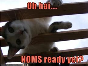 Oh hai....  NOMS ready yet?