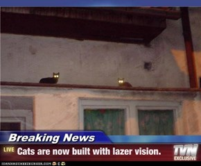 Breaking News - Cats are now built with lazer vision.
