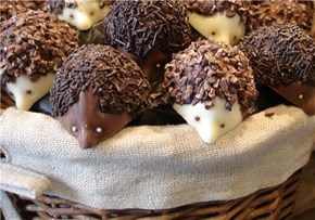 Nutty Chocolate Hedgehogs
