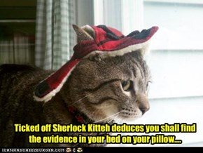 Ticked off Sherlock Kitteh deduces you shall find the evidence in your bed on your pillow....