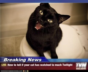Breaking News - How to tell if your cat has watched to much Twilight