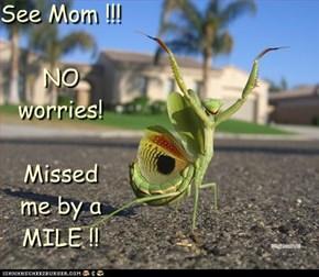 See Mom !!!  NO worries!  Missed  me by a MILE !!