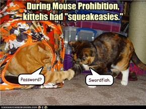 "During Mouse Prohibition, kittehs had ""squeakeasies."""