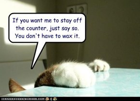 If you want me to stay off the counter, just say so.  You don't have to wax it.