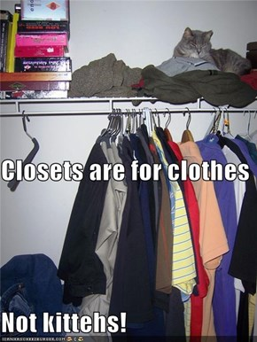 Closets are for clothes Not kittehs!