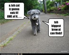 & teh cat  iz gonna  eatz it! AWL of it. . . .
