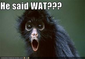 He said WAT???