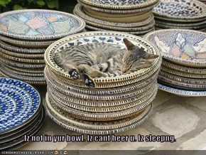 Iz not in yur bowl. Iz cant heer u. Iz sleepng.