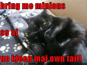 bring me minions so ai  no kleen mai own tail!