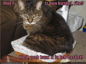 Wut?                                 Iz bun basket, rite?  Well, mah bunz iz in teh basket!