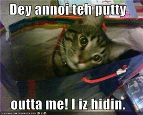 Dey annoi teh putty  outta me! I iz hidin.