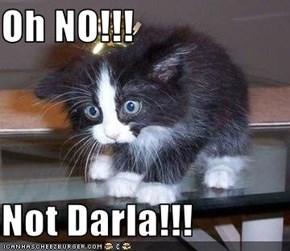 Oh NO!!!  Not Darla!!!