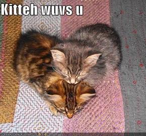 Kitteh wuvs u