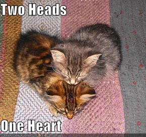 Two Heads  One Heart